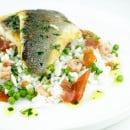 Zeebaars met gandaham, garnalen en rijstsalade-1