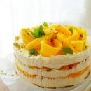 Tiramisutaart met mango